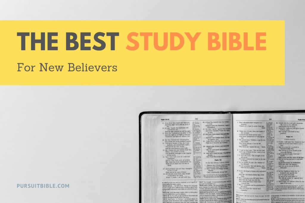 Best Study Bible for New Believers